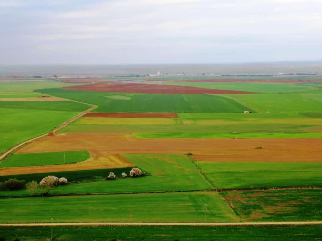 La Tierra de Campos, vista desde las murallas de Urueña