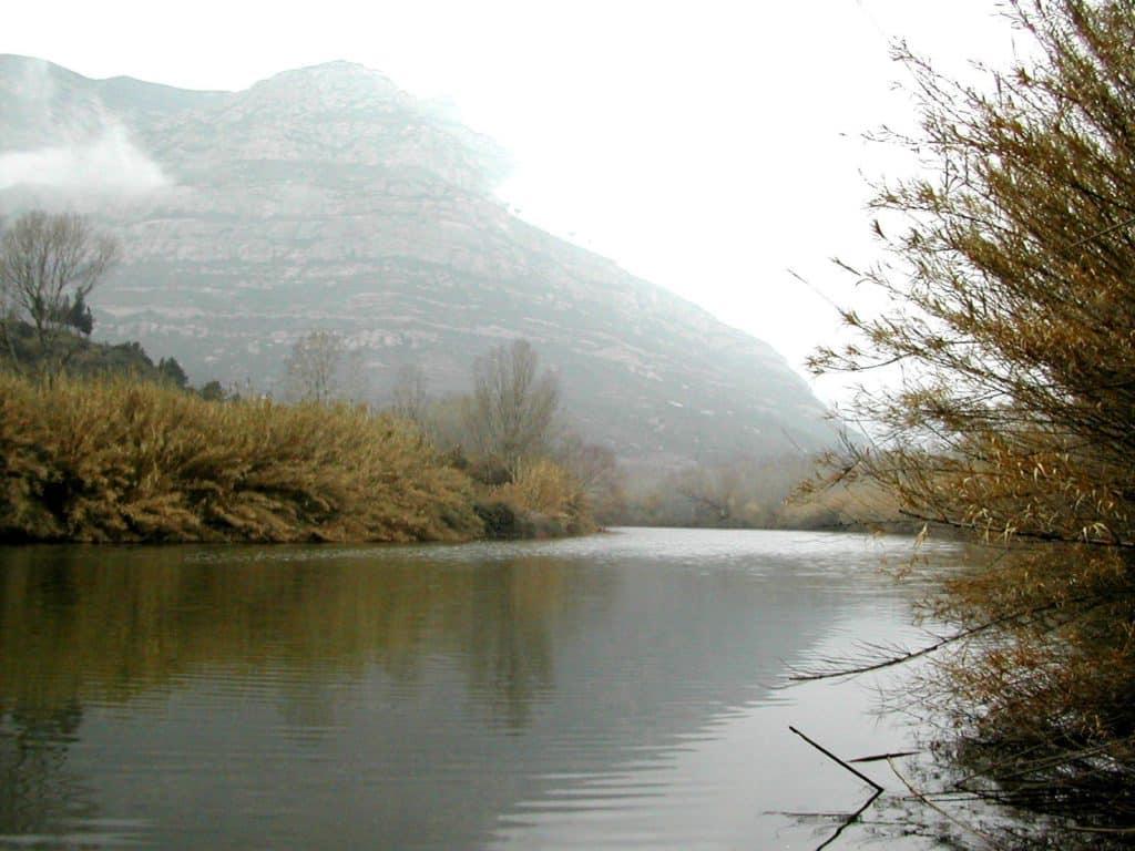 Llobregat