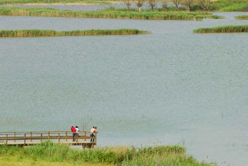 El estanque d'Ivars i Vila-sana