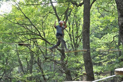 Un deportista disfruta de una actividad en un bosque castellano y leonés. /PATRIMONIO NATURAL