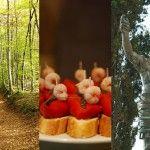 Turismo rural en Girona, Cantabria y Tarragona