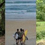 Surf, sidra y Garajonay en los Favoritos de la Semana