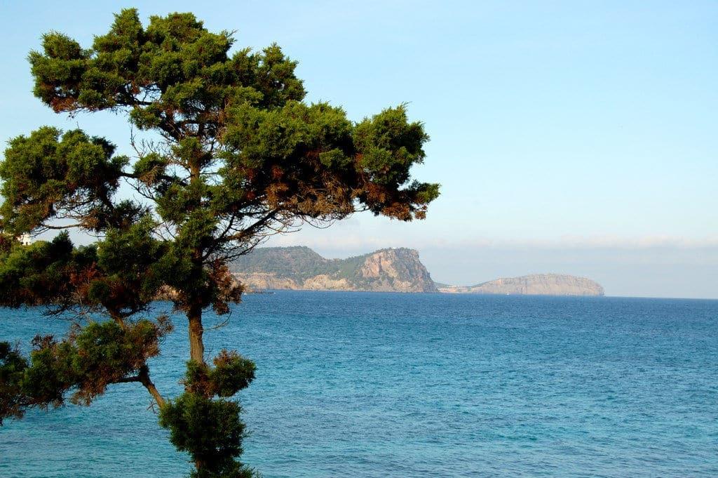 Pino, Mediterráneo y Els Amunts, al fondo