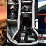 Micología, fotografía y viajes en los Favoritos de la Semana
