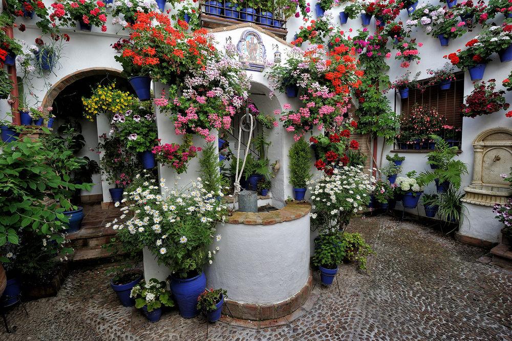 30 fotos para enamorase de los patios cordobeses - Imagenes de patios andaluces ...