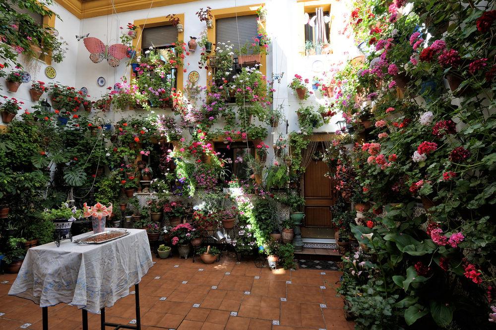 Dibujos de patios andaluces perfect patio andaluz with - Patios interiores andaluces ...