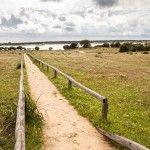 Corredor verde Guadiamar (5)