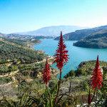 Panorámica del Valle de Lecrín. Fuente: ##http://www.turismovalledelecrin.com##Turismo Valle de Lecrín##