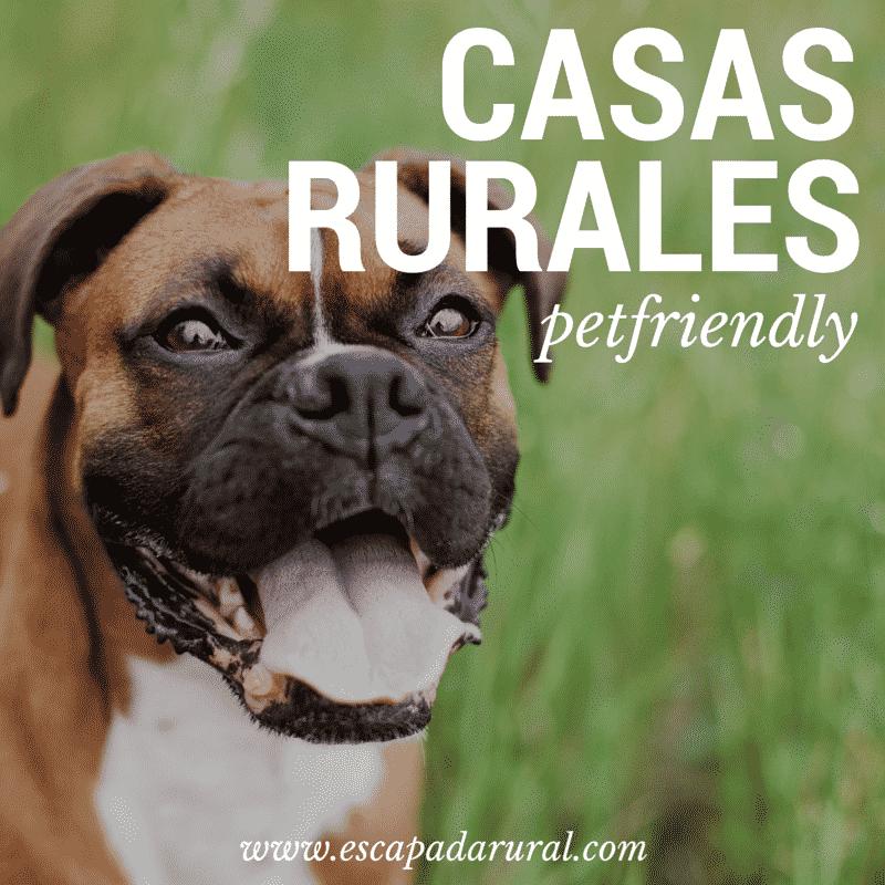 7 Casas Rurales Pet Friendly No Los Dejes En Casa