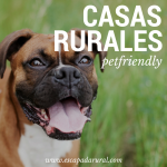 7 casas rurales Pet Friendly. ¡No los dejes en casa!