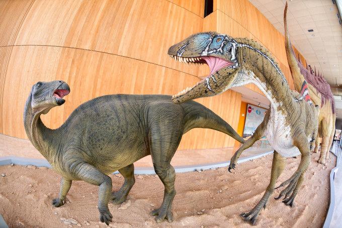 Dinosaurios Cuenca