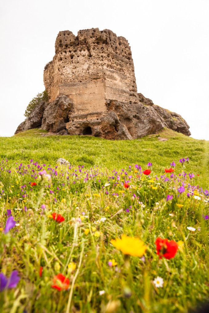 Castillo de la Carolina de la batalla de Navas de Tolosa. Fuente: Víctor Gómez - Machbel