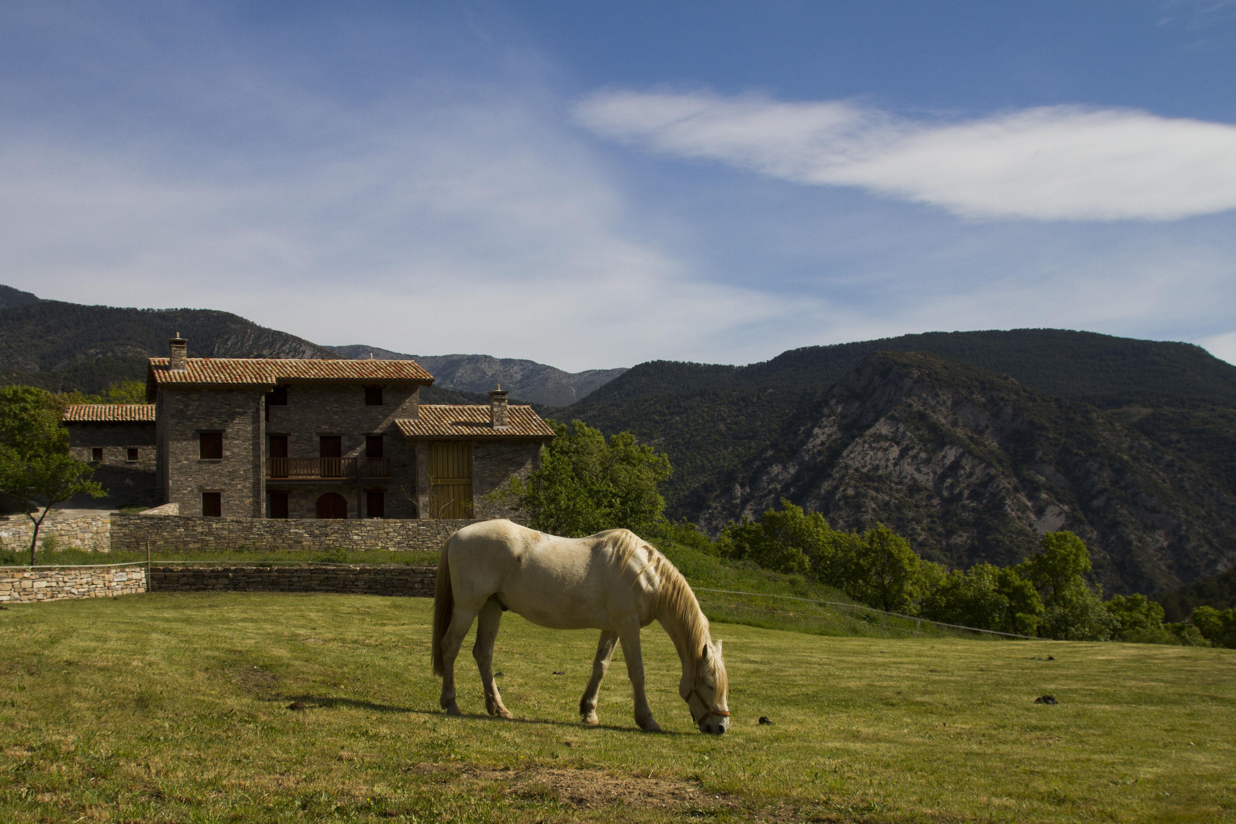 Parc Natural del Cadí-Moixeró. Presstrip BCN PROVINCE (Manel Cuesta)-143
