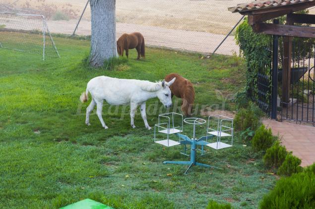 mejores pueblos pequeños para criar una familia Casas Rurales Con Granja Donde Los Nios Se Lo Pasarn En Grande