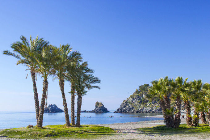 Palm trees on a beach in Almunecar