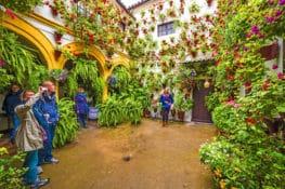 30 fotos (y 1 vídeo) para enamorarse de los patios de Córdoba