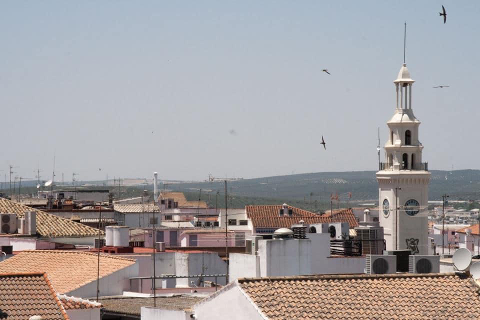 Lucena, Córdoba