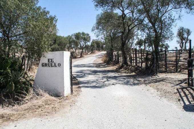 Ruta del Toro, Cádiz