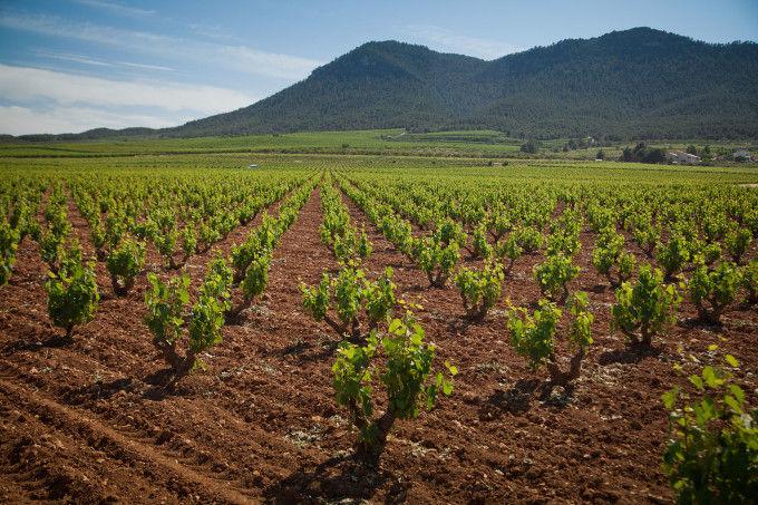El valle del Aceniche. Fuente: Sergio Gonzalez. Murcia Turística