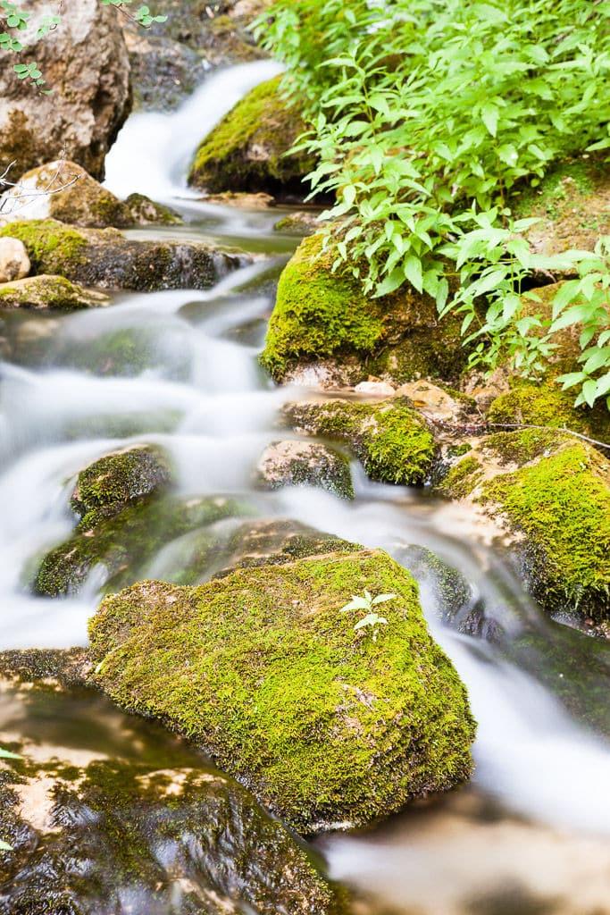 Calares río Mundo