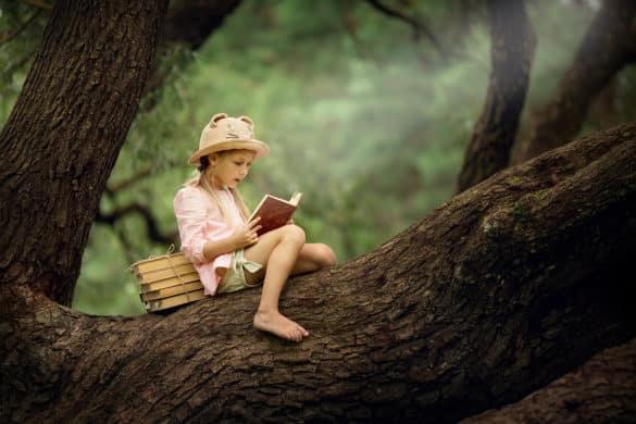 Casas rurales con bibliotecas encantadoras para celebrar el Día del Libro