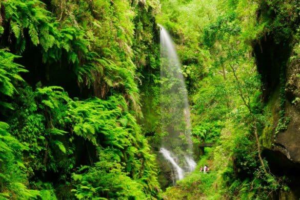 7 imprescindibles para visitar las Islas Canarias