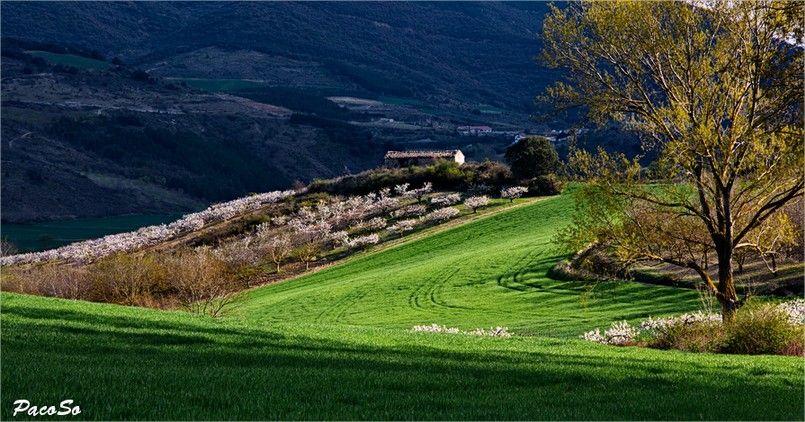 Valle de Etxauri