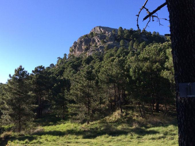 Peña del Cambrón