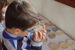 El pueblo de los niños científicos