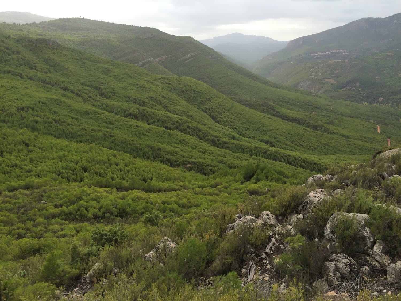 Serranía de Yeste