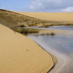 Parque Natural de las Dunas de Corrubedo