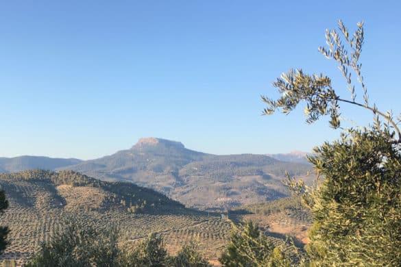 Jaén y Albacete a ojo de halcón en la Peña del Cambrón