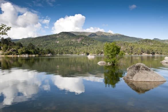 Valle de Iruelas: naturaleza, micología y rapaces