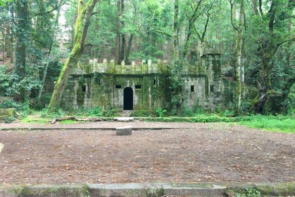 El Bosque Encantado de la Galicia Máxica
