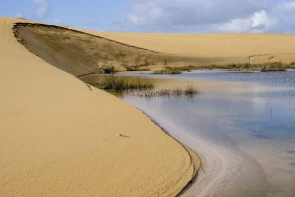 Mar y desierto en el Parque Natural de las Dunas de Corrubedo