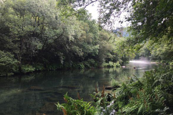 Fragas do Eume, paseando por la naturaleza gallega más auténtica