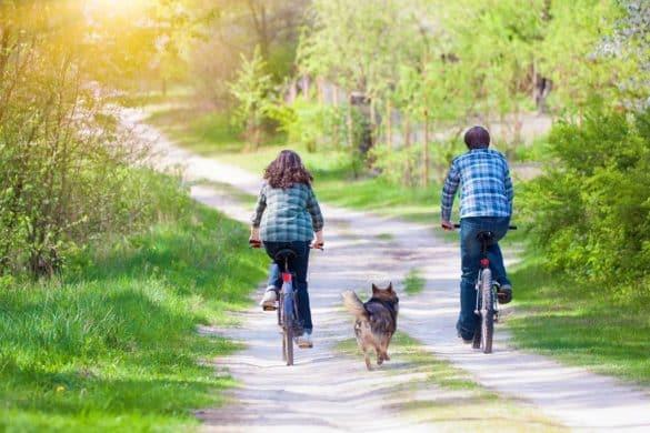 Escapadas rurales en Barcelona para familias con mascota