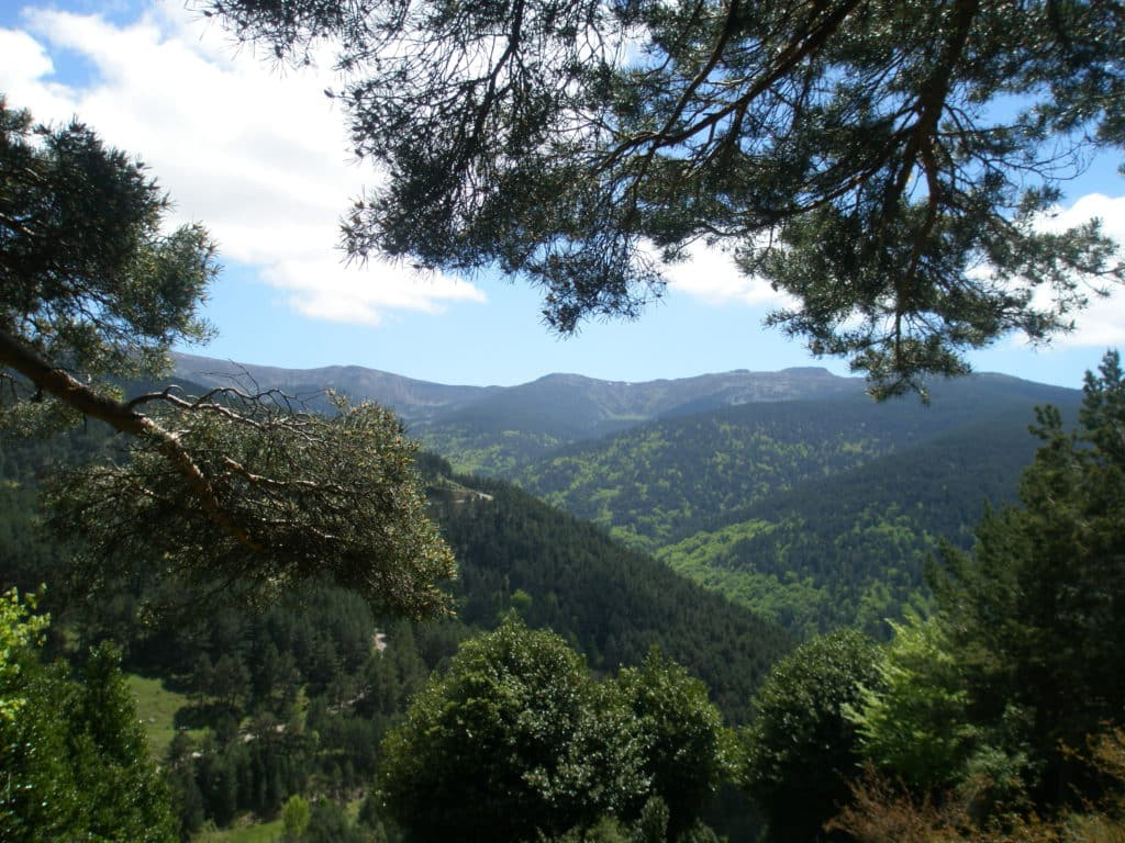 Sierra Cebollera