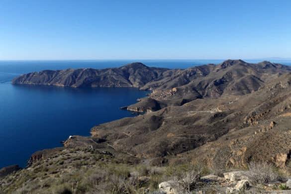 Cabo Tiñoso: riqueza natural desconocida