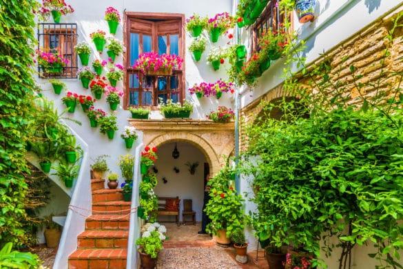 Festivales de flores de España