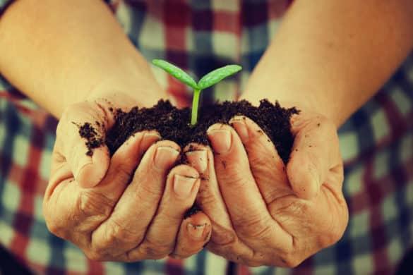 Decálogo de prácticas sostenibles en turismo rural