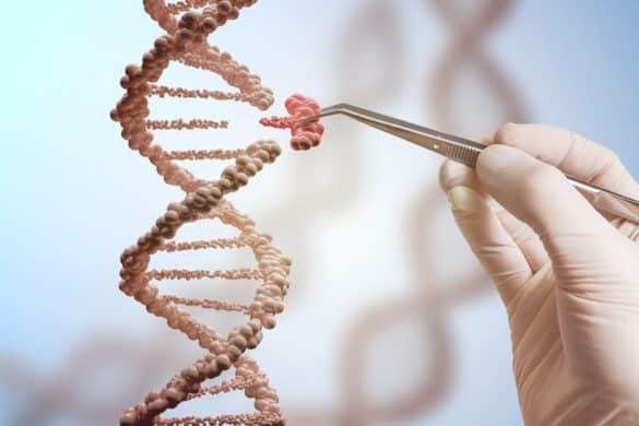 Las salinas de Alicante que cambiaron el rumbo de la biología molecular