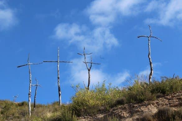 1.293 cruces como luto por un bosque calcinado