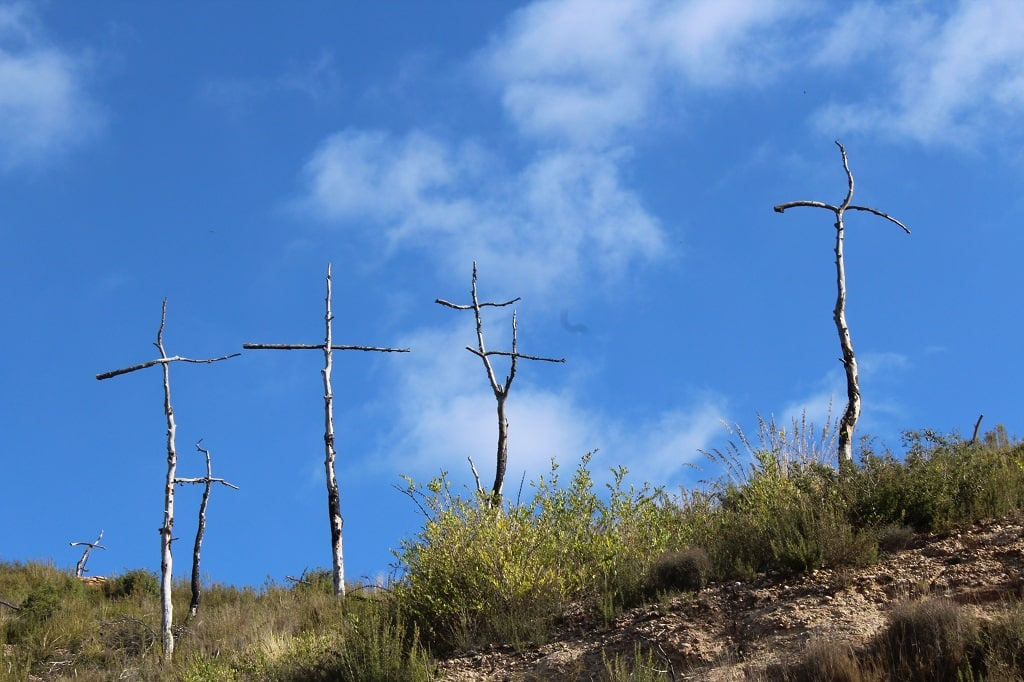 Bosque de cruces
