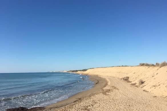 Ecosistema Dunar de Guardamar del Segura
