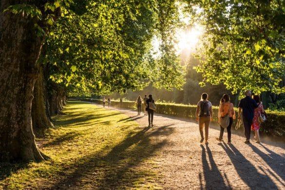 Vivir cerca de espacios verdes reduce el sobrepeso, pero no estamos seguros de la razón