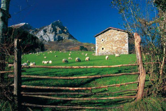 Las casas rurales al 60% de ocupación esta Semana Santa