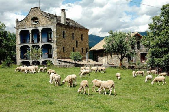 Estudio sobre el turismo rural post COVID-19
