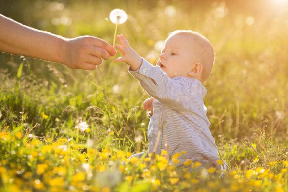 Consejos para una escapada rural con un bebé