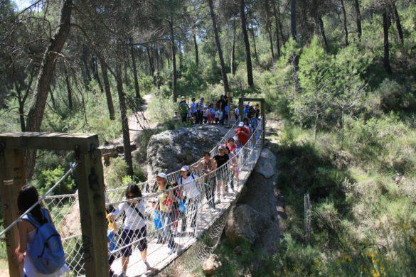 Cómo disfrutar de la Región de Murcia en familia
